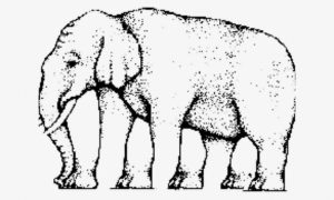 A drawing of an elephant with feet drawn in the gap between the legs. This is an example of a literal optical illusion.