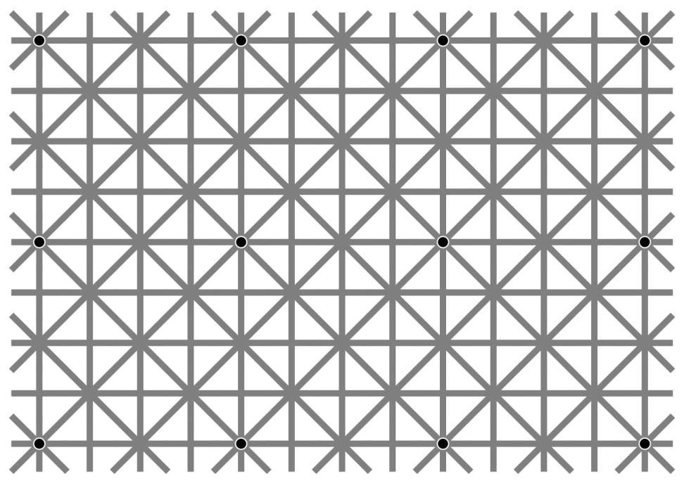 The 12 black dots illusion by Jacques Ninio and Kent A. Stevens.